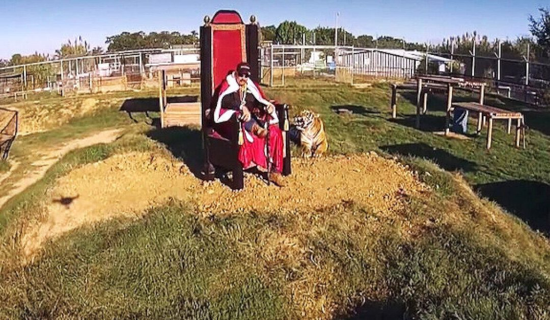 Tiger King: Are We Much Different From Joe Exotic?