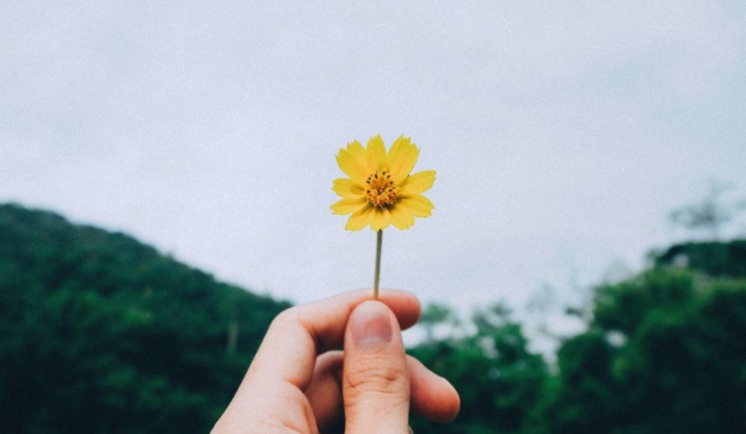 Six Ways to Tend Your Soul in Times of Turmoil